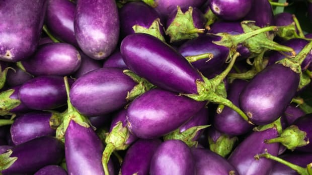 5 Time-Tested Steps to Growing Perfectly Purple Eggplant
