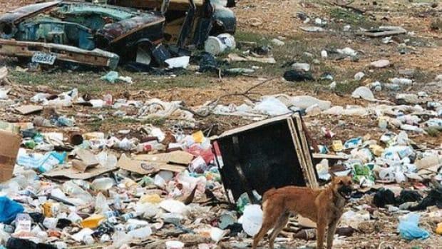 garbagedump-ccflcr-Photocapy1