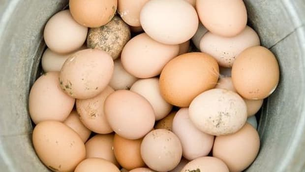 eggs-ccflr-ladeda