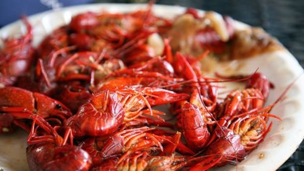 crawfish-ccflcr-smercury98