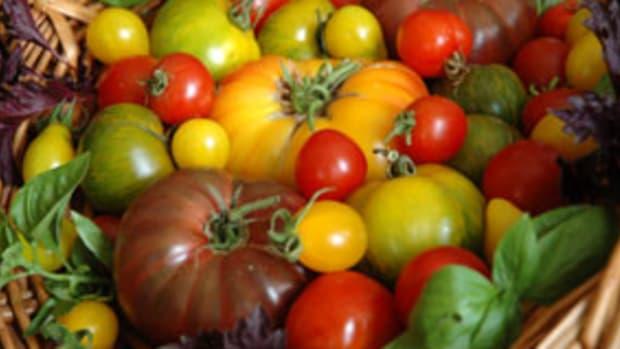 organic-tomatoe-basket2