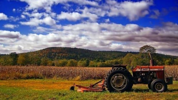 crops-ccflcr-Nicholas_T