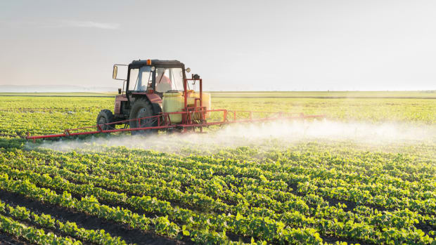 monsanto company glyphosate is used to treat gmo soy