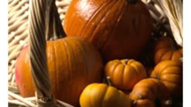 pumpkin20081