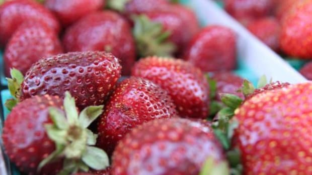 strawberry-jillslibrary-jillettinger
