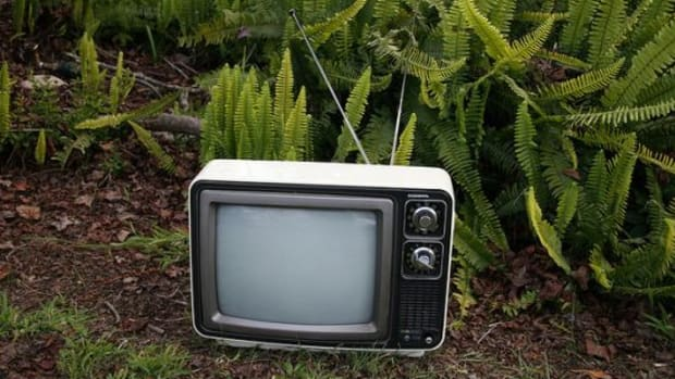 tv-ccflcr-mollybob