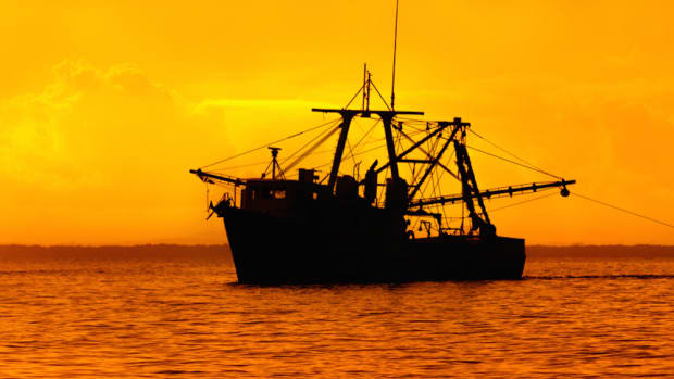 overfishing remains a huge problem