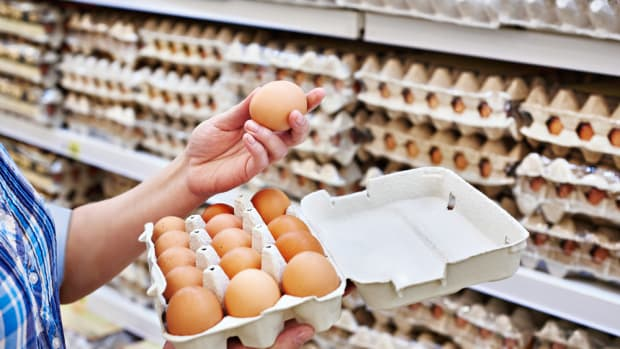 Avian Flu Sparks Increased Demand For Organic and Free Range Eggs