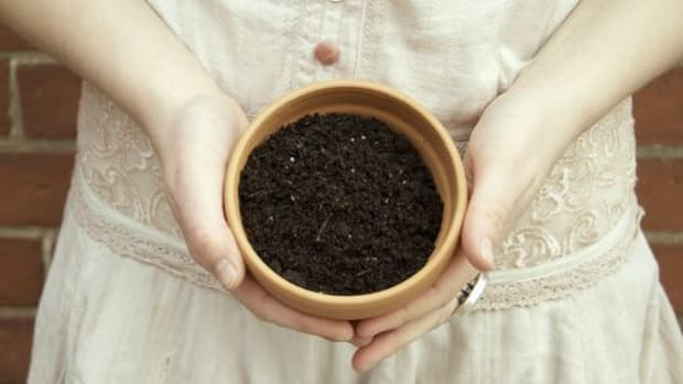 soil-ccflcr-gennag