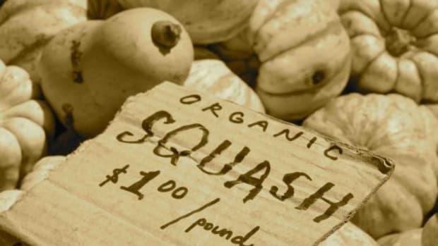 ogsquash-jillslibrary-jillettinger1