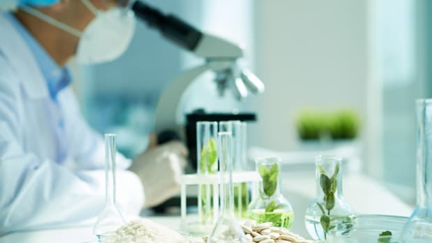 glyphosate herbicide testing