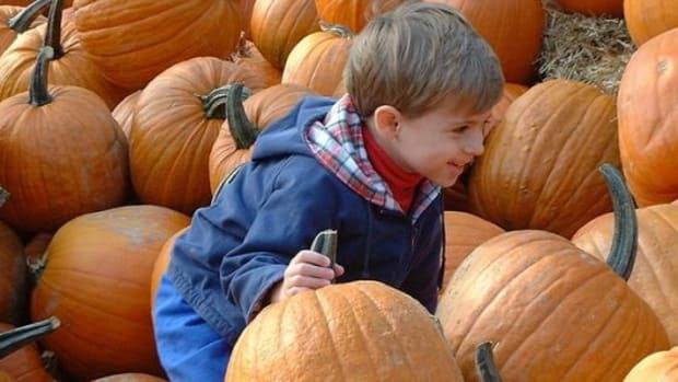 pumpkin-patch-ccfl