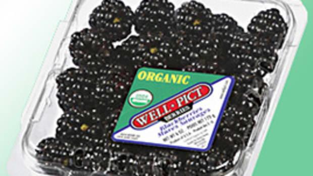 wellpictblackberries3