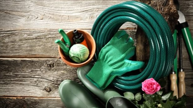 10 Eco-Friendly Garden Tools You Know You Want