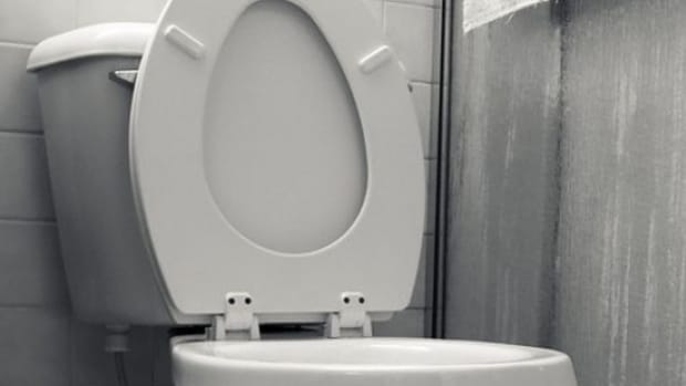 toilet-ccflcr-dino1967b