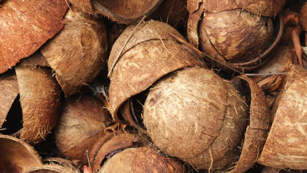 "Coconut Vinegar is the New ""It"" Superfood: Oh, The Coco Craze That Won't Stop Giving"
