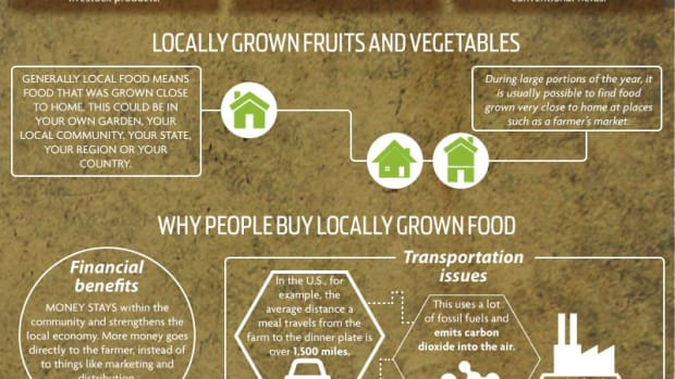 Infographic-Organic-and-Whole-Foods-vs-Conventional-Foods-and-GMOs