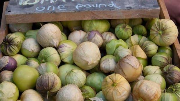 tomatillos-ccflcr-tim-sackton