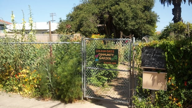 communitygarden_cc