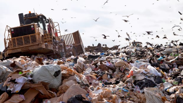 food waste ends up in landfills
