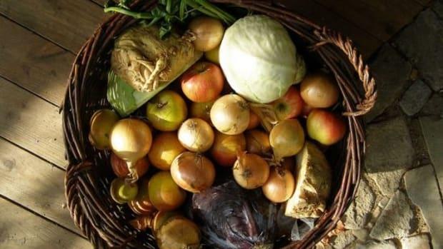 autumnharvest-ccflcr-erix