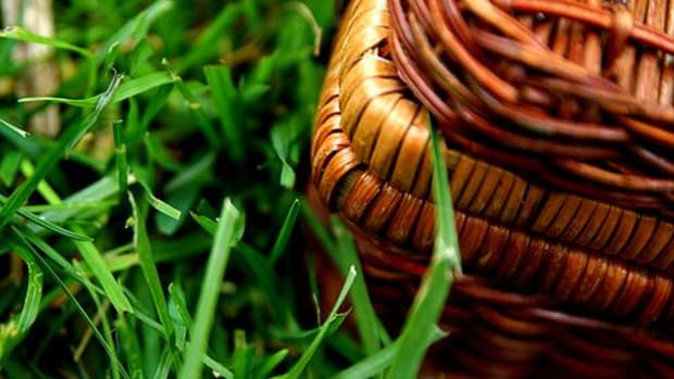 picnic-basket-ccflcr-stevendepolo
