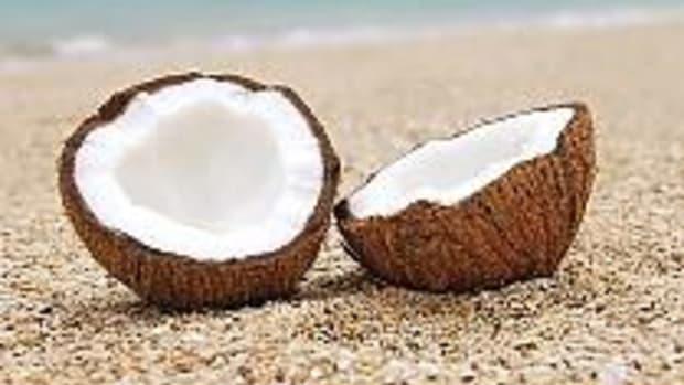coconut13