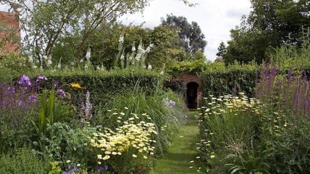 cottage-garden-ccflcr-ahisgett