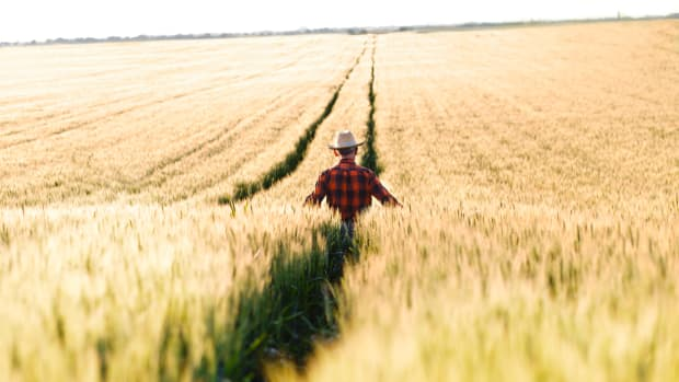 Do Corporations Hate Our Farmers?
