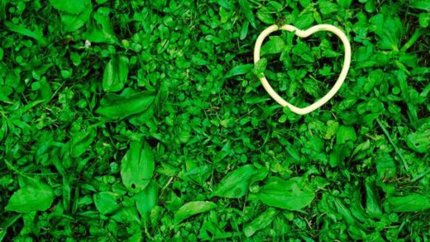 greengrassheart