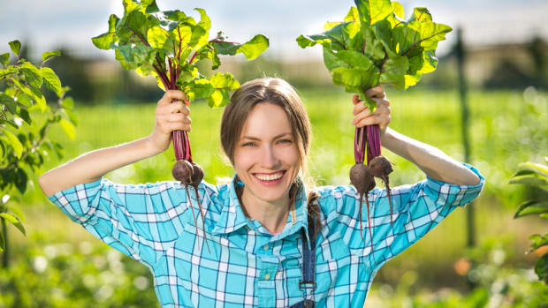 Organic Farming Way More Profitable than Conventional, Study Finds