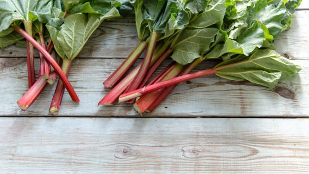 make the most of rhubarb season