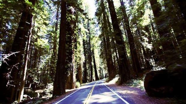 road-trip-ccflcr-photopaige