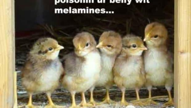 MELAMINE3