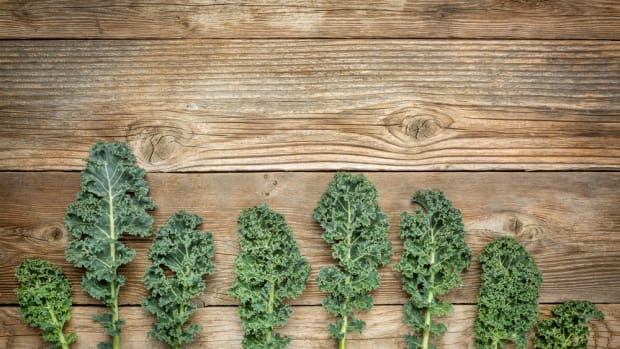 growing kale is easy