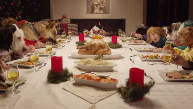 13 Dogs and 1 Cat Feasting is the Best Belated Christmas Present Ever [Video]