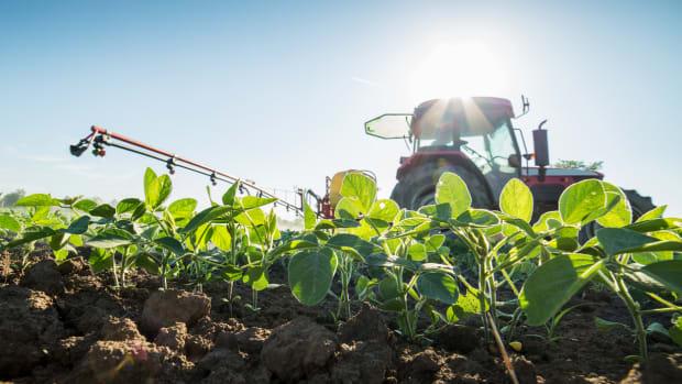 glyphosate herbicide