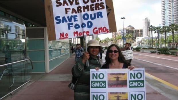 mexico-hawaii-ban-gmos-ccfl