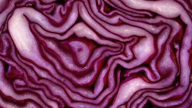 redcabbage-ccflcr-rosselliot