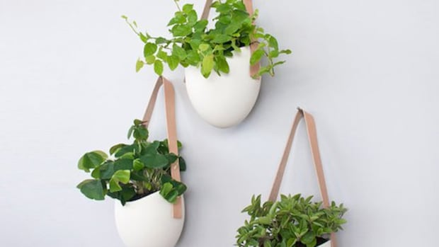 8 Fun And Fantastic Ideas For Hanging Planters