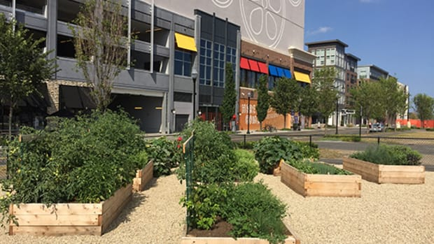 Green City Growers installed raised bed gardens at Assembly Row