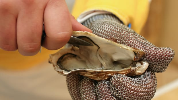 Do Oysters Qualify as Vegan Food?