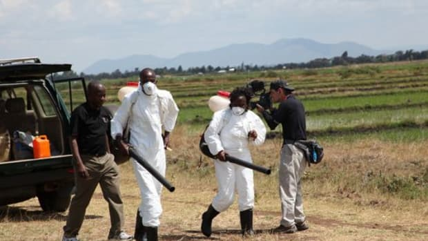 ddt_spraying_africa_GEF_cclfr