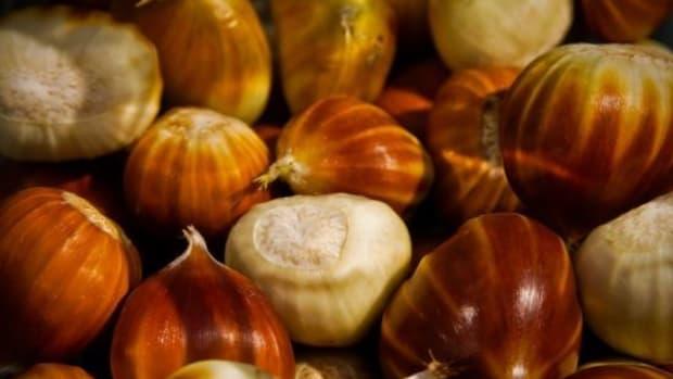 chestnuts-ccflcr-simondeanmedia