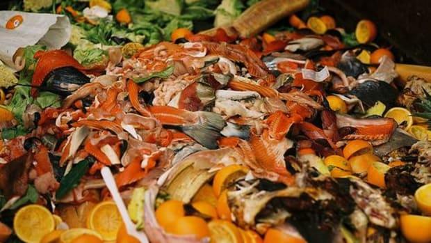 foodwaste-ccflcr-taz