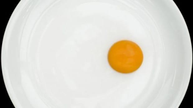 egg-ccflcr-Filippo