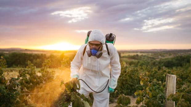 Man With Terminal Cancer Goes to Trial Against Monsanto