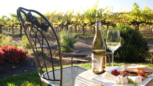 Where to drink sustainable wine in Dry Creek Valley
