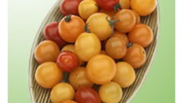 tomatoappetizer1