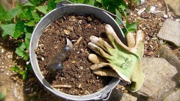 spring gardening, growing a garden, soil amendments, healthy soil